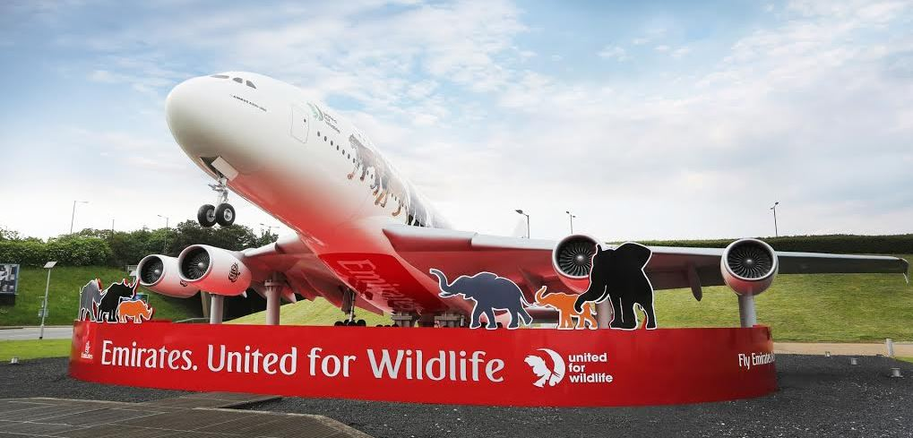 The newly unveiled Emirates United for Wildlife A380