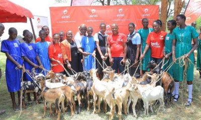 The Airtel Uganda team hands over 50 goats to school going girls in Moroto district.